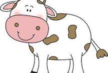 Cattle Drawings