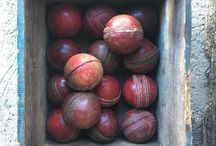 Cricket & Other Sport
