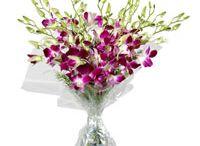 Send Online Diwali Gifts