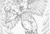 Hawkman & Hawkgirl