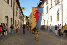 Palio di Santa Reparata / Seguiteci su http://www.visitcastrocaro.it/ e https://www.facebook.com/UfficioTuristicoIAT.CastrocaroTerme