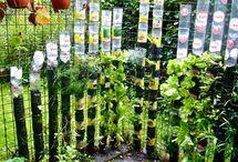 Jardin , aménagement extérieur
