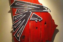 Falcons for Life