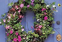 Wreaths / by Sandra Waldrop