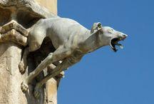 Gargoyle - żygacz