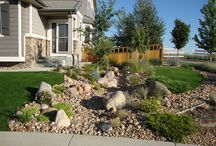 Landscaping, Outdoors / by Diana Callies-Shipley