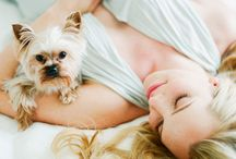 Photography maternity with dog