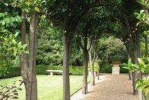 ideas entrace or garden to seillans
