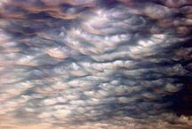 Clouds / by Andrea Williams