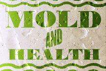 Mold Allergies / The Chicago mold count is usually at its highest during the spring and summer months, though mold allergy sufferers can be affected year round. Heavier periods of rain, mixed with higher temperatures and humidity levels, create the perfect conditions for mold to grow in wet grass and leaves, compost piles, and rotting farm crops.