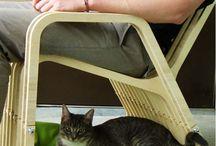Creative Pet Furniture