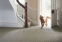 Our news / Find out about our latest news and information that can help when choosing a carpet