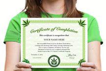 cannabis universiteit.