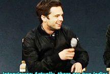 Cute hooman Sebastian Stan