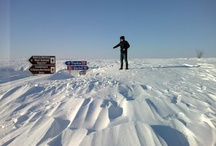 My winter 2012 / by petronela ungureanu