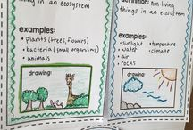 Science-ecosystems