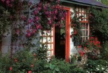 GARDEN SHED / by Verbena Cottage