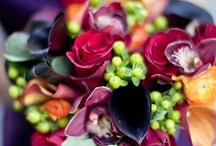 Flowers / by Margie Frank