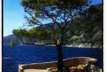Croatia - island Hvar