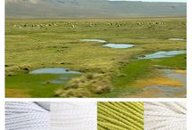 Colorway Wednesday / Color inspiration palettes featuring Blue Sky Alpacas yarns. #knit #crochet #yarn / by Blue Sky Alpacas Yarn