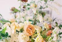 florals. / by erin evans