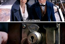 Fantastic Beast and where to find them♥