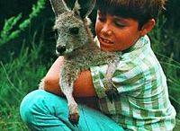 Australia in the 70s