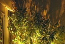 lys til planter