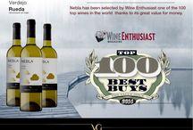 Nebla : uno de los 100 mejores vinos del mundo / @wineenthusiast ha incluido a nuestro #vinoblanco Nebla Verdejo D.O. Rueda en su lista de los 100 mejores vinos del año 2014 por su relación calidad-precio.