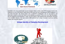 PHP Development Company India / by Susan Moore