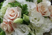 Wedding Bouquets / Wedding Bouquets By Jaclyn Roma Floral Design