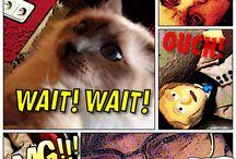 comic strip / Comics home cooking
