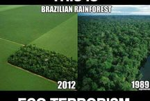 Save the: earth, ocean, rainforests, rhinos, penguins