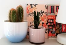 Jolis cache-pots pour plantes d'intérieur !