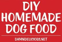Dog Food and Treata