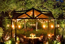 Backyard Ideas / by Carol Hillidge