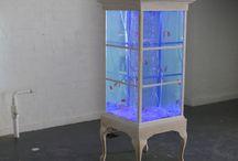DIY Aquariums