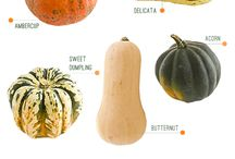 Recipes - Squash/Pumpkin