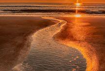 Sun Sea & Sky