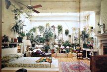 Indoor Paradise