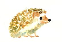 My Favorite Hedgehogs! / Hedgehogs are delightful creatures! / by Bits Of Whimsy