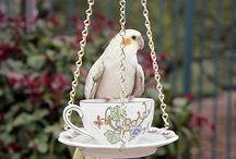 bird feeder diy fun