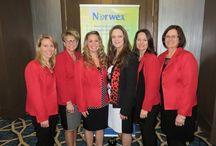 Norwex Dream Team