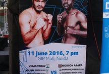 Pro Boxing / Professional Boxing