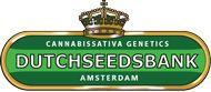 About Dutchseedsbank® / About dutchseedsbank