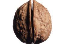 Watnoten hazelnoten