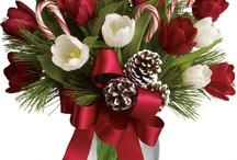 Цветы новогоднее