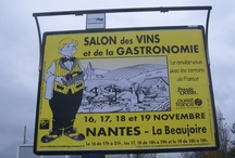 Wines & Food in Nantes, France