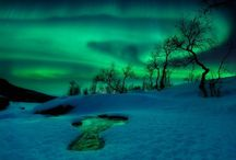 Norwaycentric / by Eva Steffensen