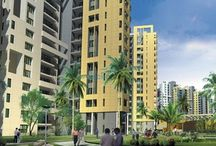 current property rates in Gurgaon
